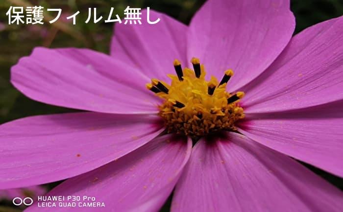 Alinsea P30 Pro 保護フィルム無し 撮影画像(コスモス)
